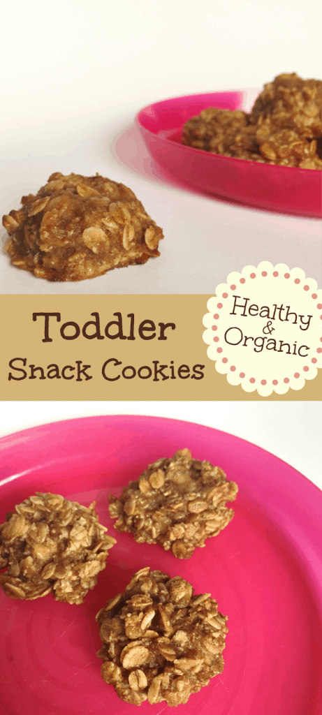 Healthy and Organic toddler snacks. These cookies are the perfect snack for toddlers. Simple ingredients of oatmeal, banana, and cinnamon. Even perfect for preschool snacks.