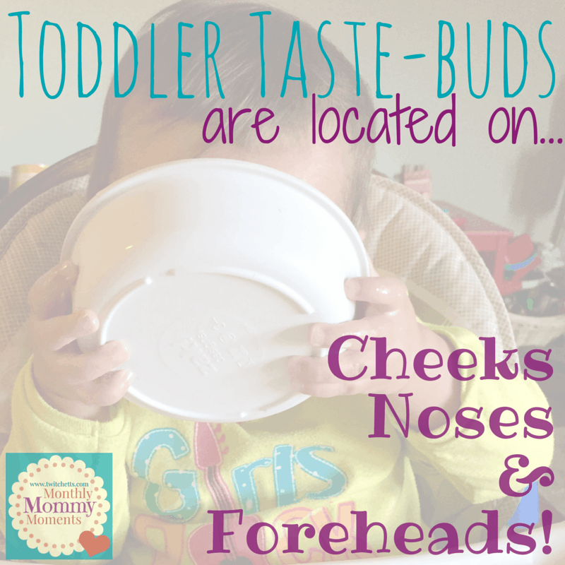 Toddler Taste-buds...located on cheeks, noses & foreheads - Monthly Mommy Moments - July 2015