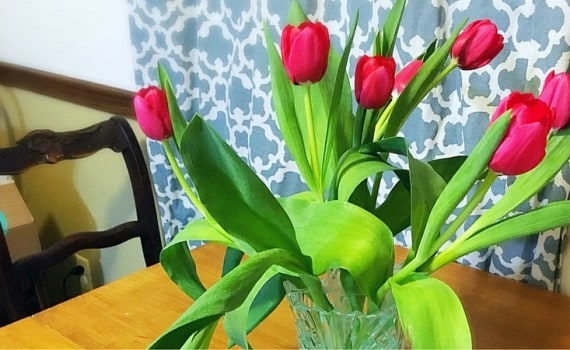 Keep Fresh Cut Flowers Alive Longer. Quick tips for preserving bouquets of flowers.