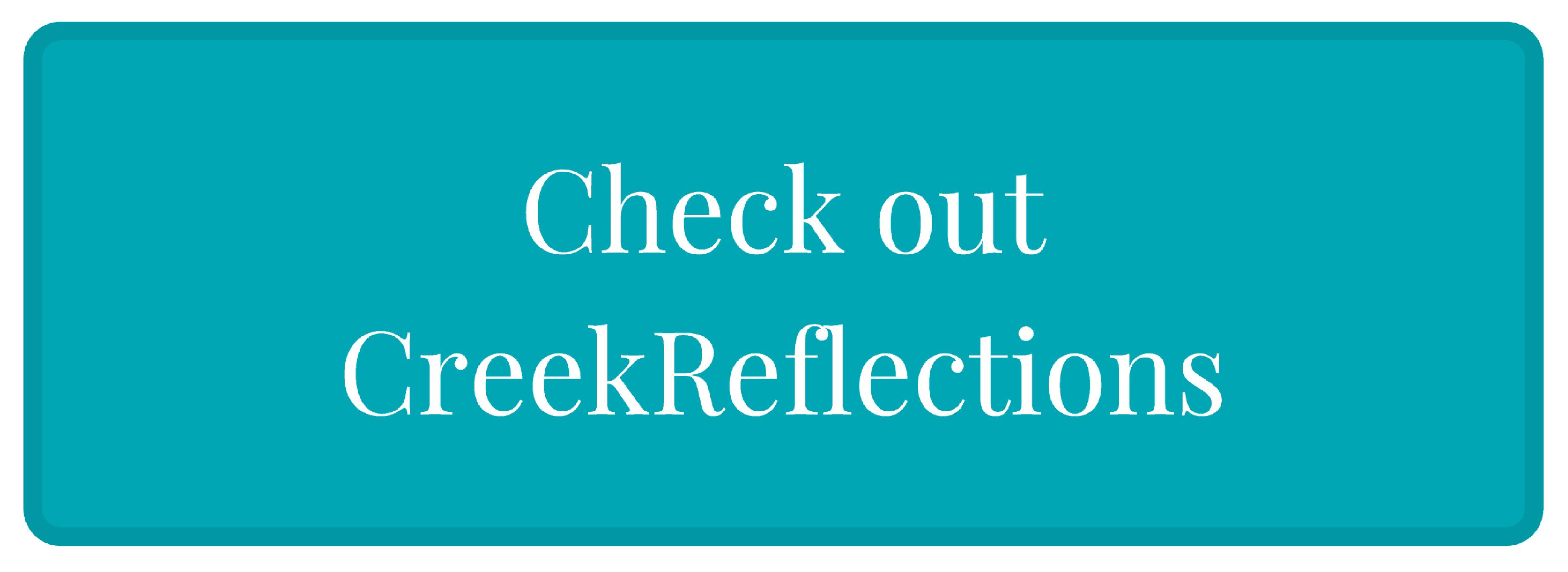 CreekReflections-FitBit Bracelet