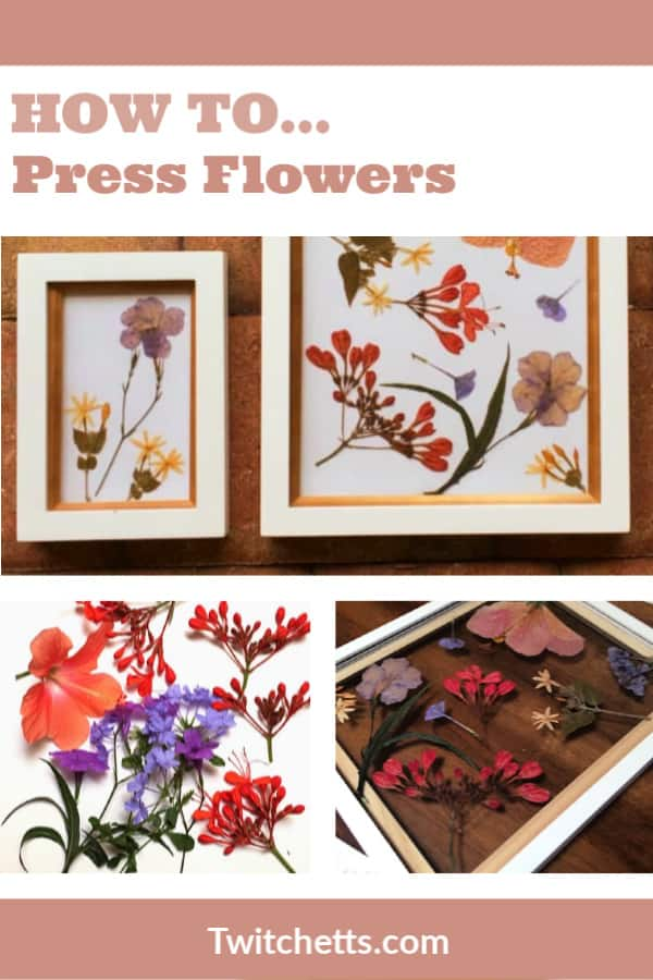 Check out this tutorial for the best way to press flowers with kids. They can collect the flowers, press them, and arrange a beautiful piece of artwork.  It's a fun spring activity for kids that has been around for ages. #twitchetts