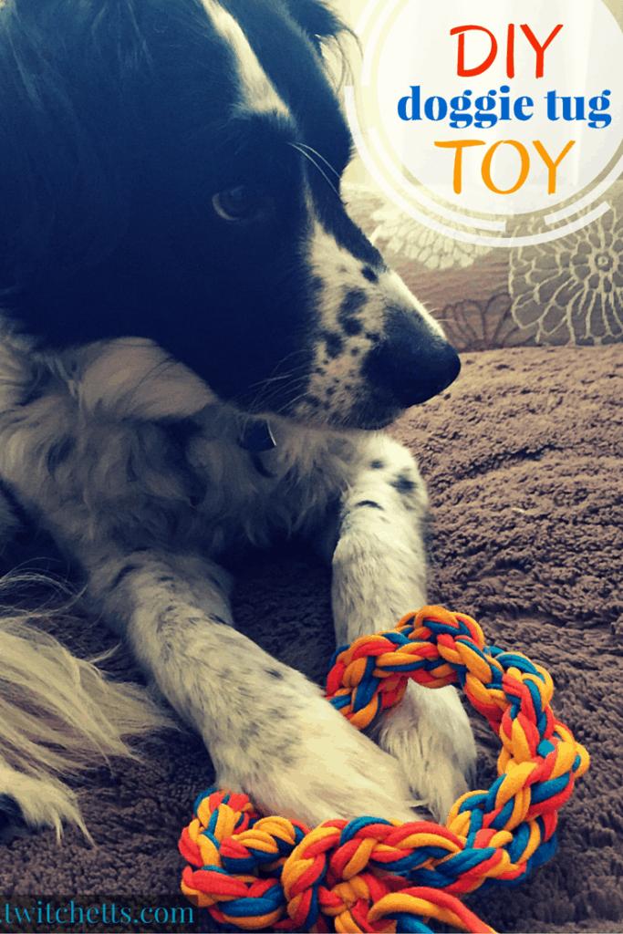 DIY doggie tug Toy