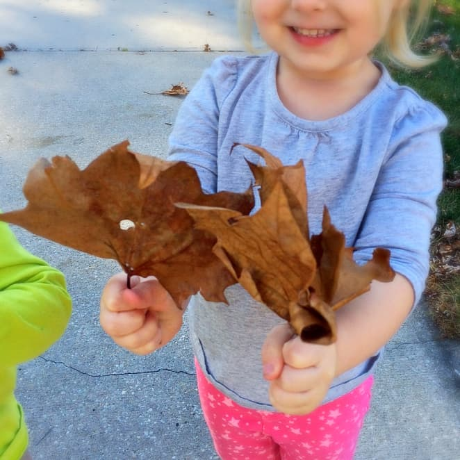 Fun Free Fall Scavenger Hunt