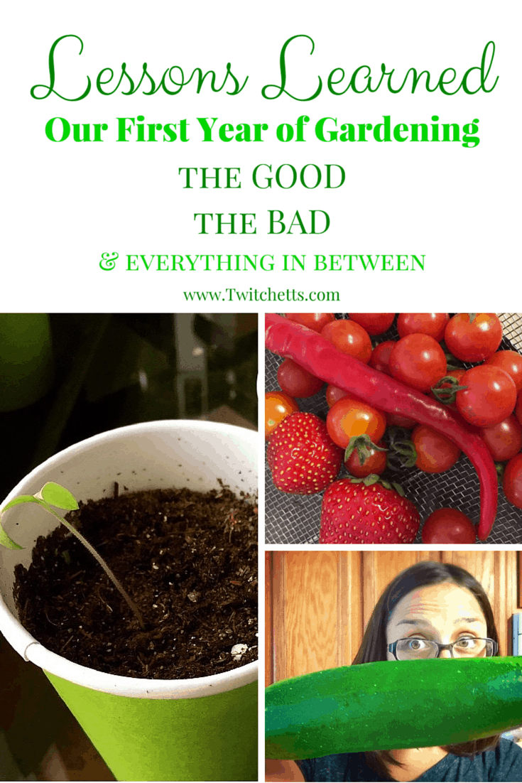 We were semi successful in our first year gardening. Check out the good, the bad, and everything in between. Tips for first time gardeners.