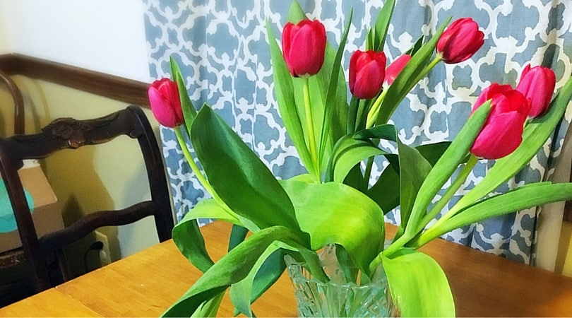 How To Keep Fresh Cut Flowers Alive Longer