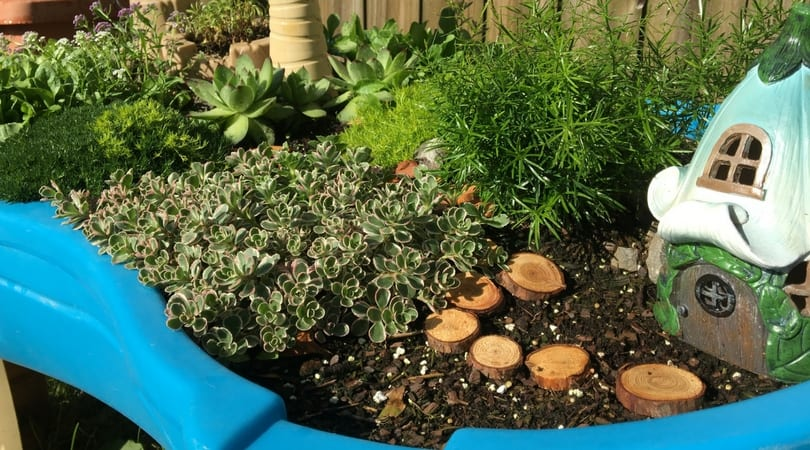 Fairy Garden For Kids ~ Upcycled Water Table Container Garden